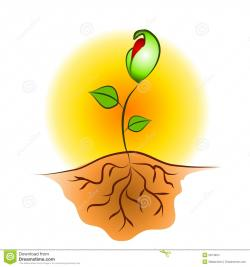 Seeds clipart hand planting