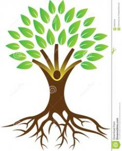 Roots clipart branch