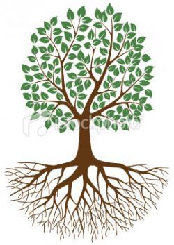 Bio clipart family tree