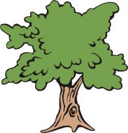 Climbing Tree clipart tree service