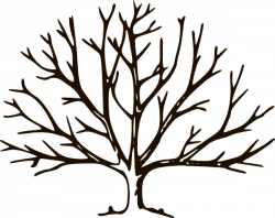 Roots clipart empty tree