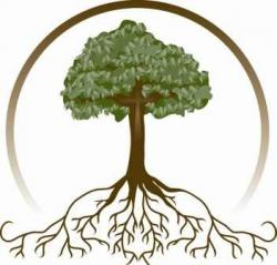 Roots clipart family tree