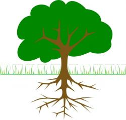Roots clipart tree illustration