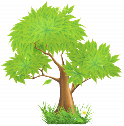 Eucalyptus clipart forest tree