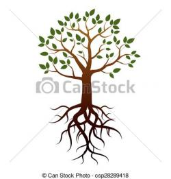 Roots clipart vector