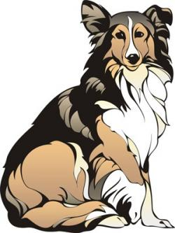 Rough Collie clipart sheepdog