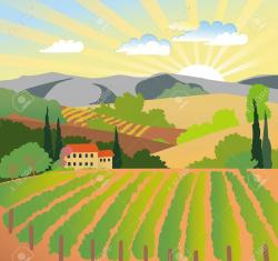 Vineyard clipart landscape