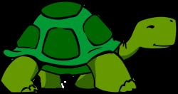 Tortoise clipart slow
