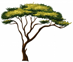 Savannah clipart jungle tree