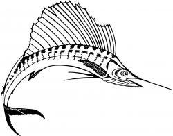 Swordfish clipart black and white