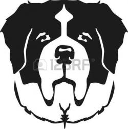 Saint Bernard clipart drawing