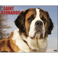 Saint Bernard clipart loyal dog
