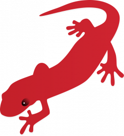 Newt clipart reptile
