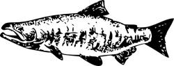 Salmon clipart black and white