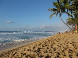 Shore clipart beach wave