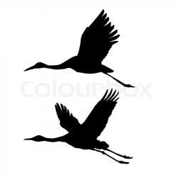 Sandhill Crane clipart stork