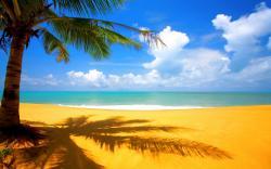 Sandy Beach clipart hawaii beach