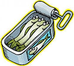 Sardine clipart anchovy