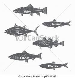 Sardines clipart salmon fish