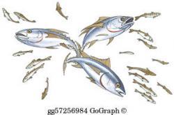 Sardine clipart shoal
