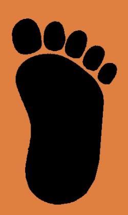 Footprint clipart orangutan