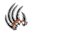 Scratches clipart tiger claw