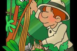 Scientist clipart rainforest
