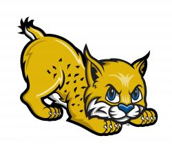 Wildcat clipart cute