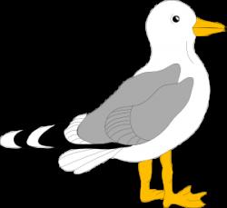 Sea Bird clipart