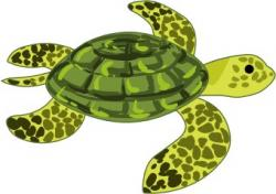 Marine Life clipart green turtle
