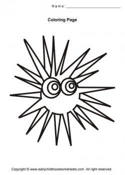 Sea Urchin clipart black and white