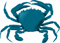 Seafood clipart blue crab