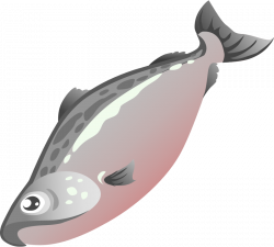 Salmon clipart simple fish