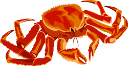 Seafood clipart crab claw