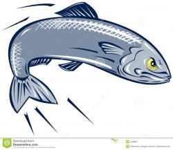 Sardine clipart cooked fish