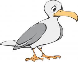 Albatross clipart cartoon