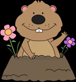 Groundhog clipart cute