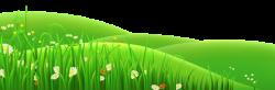Grass clipart flower meadow