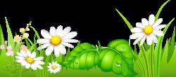 Field clipart grass ground