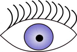 Eyeball clipart sense sight