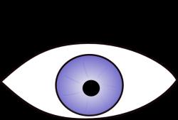 Eyeball clipart eye vision