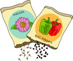 Seeds clipart gardening