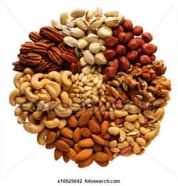 Nut clipart mixed nut