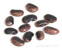 Seed clipart runner bean