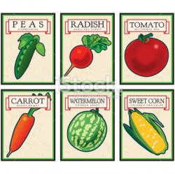 Seed clipart seed packet