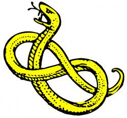 Anaconda clipart snake head