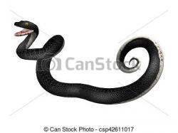 Serpent clipart black racer