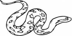 Python clipart ular