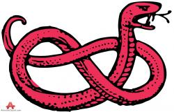 Serpent clipart jungle snake