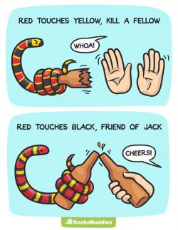 Snake clipart touch
